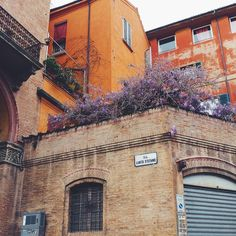 In my favourite place in Bologna Piazza S.Stefano spring is coming!   #piazzeitaliane #justitalianthings #turismoer #igersemiliaromagna #emiliaromagna #ig_bologna #ig_emiliaromagna #igersbologna #igers_emiliaromagna #visititaly #becurious #flowers #spring #springiscoming #bloom #italy #bologna #labellabologna #vivobologna #bellaitalia #italia by deedeeferraree