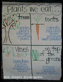 New Ideas Plants Kindergarten Crafts Anchor Charts Preschool Garden, Preschool Science, Science Classroom, Science Activities, Classroom Activities, Science Ideas, Group Activities, Science Lessons, Preschool Charts