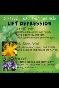 Herbal Remedies: sometimes we need to take it back to nature in order to heal.
