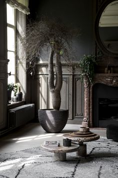 Each pot of Atelier Vierkant is unique and tells a different story. A story made of inspiration and transpiration. Living Room Colors, Living Room Decor, Living Spaces, Home Interior Accessories, Warehouse Living, Indoor Trees, Patio Planters, Interior Decorating, Interior Design