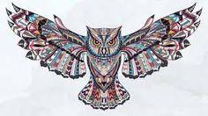 facebook cover owl ile ilgili görsel sonucu