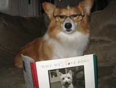 a sophisticated reader