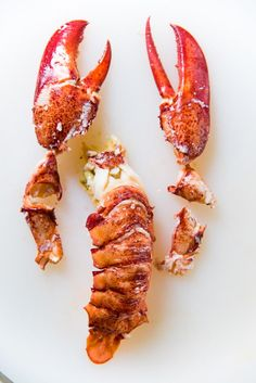 How to cook lobster perfectly - A comprehensive guide to help you prepare and cook a lip-smackingly delicious, and impressive lobster with no guess work. Cooked Lobster, Cooking Lobster Tails, Lobster Meat, How To Cook Lobster, Lobster Recipes, Seafood Recipes, Dessert Drinks, Dental Health, Hunger Games