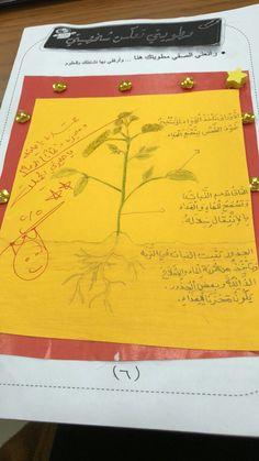 النشاط المدرسي ينمي ابداعي مدارس منارات الرياض التعليم معارف للتعليم موهبة السعودي مطويات مميزه للصف الثاني الابتدائي في ماده العلوم