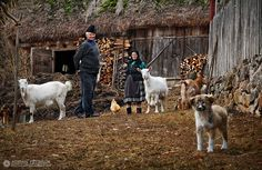 great photos from Romania! Beautiful Places To Visit, Life Is Beautiful, Visit Romania, City People, Shepherds Hut, Central Europe, Farm Yard, People Of The World, All About Eyes