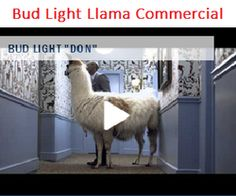 Doberhuahua omg this audi super bowl commercial review made me bud lights 2014 super bowl commercial teaser with don cheadle and a llama has been released aloadofball Gallery