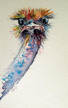 Ostrich by Kovacs Anna Brigitta