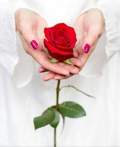 300 idee su ❧ Fiori tra le mani ❧ nel 2021 | fiori, mani, bouquet per  damigelle