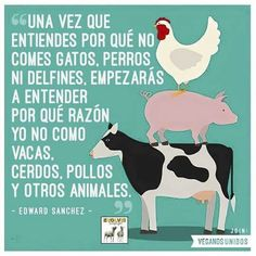 Igualdad animal Mercy For Animals, Animals And Pets, Cute Animals, Go Veggie, Vegan Quotes, Vegetarian Lifestyle, Why Vegan, Vegan Animals, Graphic Quotes