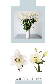 Diy Bouquet, Buy Flowers, White Lilies, Carnations, Hydrangea, Peonies, Greenery, Fields, Garland