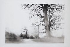 Image result for mylar drawing
