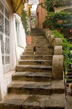 More Steps in Positano, Italy