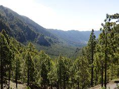 la Cumbrecita- La Palma