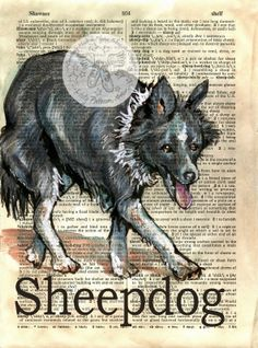 Sheepdog Mixed Media Drawing on Distressed, Dictionary Page - available for purchase at www.etsy.com/shop/flyingshoes - flying shoes art studio