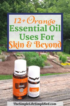 Are you looking for an essential oil for your skin? Look no further than Orange essential oil! One of my favorites, Orange essential oil has many uses and benefits for skin and beyond. Find out more and learn how to use this refreshing oil! Essential Oil Starter Kit, Essential Oils For Skin, Orange Essential Oil, Essential Oil Uses, Young Living Essential Oils, Natural Cleanse, Natural Health, Natural Skin, Essential Oils For Headaches