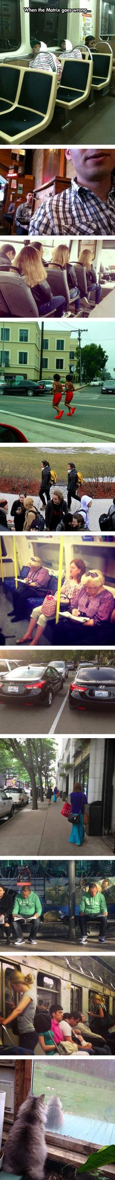 Oh, another glitch in the Matrix... Images Marrantes, Funny Images, Funny Pics, Glitch In The Matrix, Matrix 1, Laughing So Hard, Can't Stop Laughing, Funny Cute, The Funny