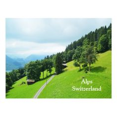 #Swiss alps in summer postcard - #travel #trip #journey #tour #voyage #vacationtrip #vaction #traveling #travelling #gifts #giftideas #idea