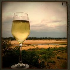 Wine and Letaba River @tinazinthwood Instagram