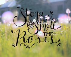 Stop And Smell The Roses | Free People Blog #freepeople