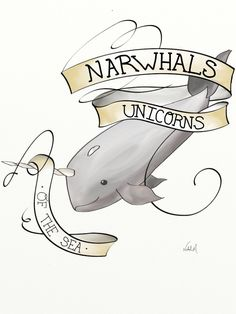 Daily Drawing: Narwhals