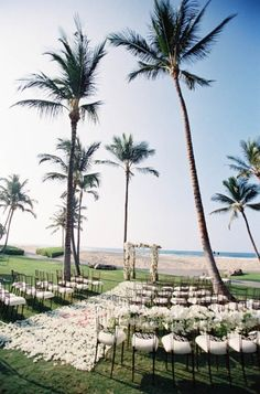 Wedding ceremony minus the flowers on the chairs and the pink flowers in the aisle. Also gold chairs with white cushions and change the gazebo with the white flowers to a gazebo draped in navy blue fabric and white bouquets with gold accents.