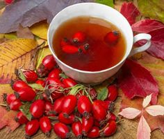 Why Rosehip Tea Is A Very Powerful Source For Vitamin C – Home Based Business, Work From Home, Network Marketing, MLM, Directs Sells Arugula Pizza, Pesto Spinach, Rosehip Tea, Smoothie, Best Tea, Quites, Healthy Alternatives, Kraut, Herbal Medicine