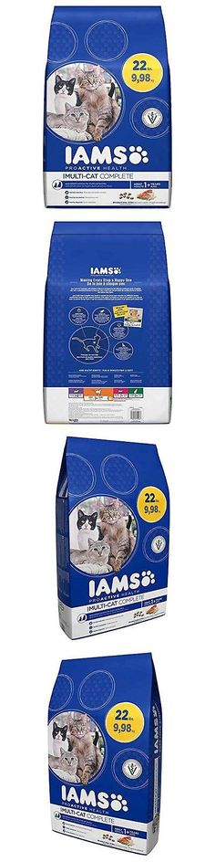 Cat Food 63073: Iams Proactive Health Multi-Cat Complete With Salmon And  Chicken Dry