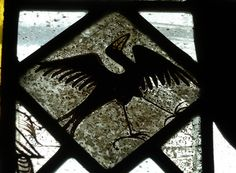 One of a series of illustrations of birds in the church of St Mary, Clipsham, Rutland. The glass is clearly medieval and is closely related, I feel, to similar work in the Zouche Chapel of York Minster. In 1337 William la Zouche(later Archbishop of York) co-founded with Roger la Zouche, a chantry chapel of St Nicholas in the church of Clipsham. Although the chapel did not survive the Dissolution, the advowson belonged to the lords of the manor and is mentioned in later documents of sale.