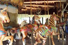 The c.1900 Dentzel Carousel at Weona Park in Pen Argyl, PA.  Dentzel Outside Row Zebra...