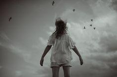 If I were a  Bird...