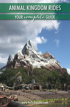 Complete Guide to Animal Kingdom Rides - Everything You Need to Know! Are you planning a family vacation to Walt Disney World? Here is a complete guide to all Animal Kingdom rides and attractions! Disney World Resorts, Viaje A Disney World, Walt Disney World Rides, Disney World Vacation Planning, Disney World Parks, Disney Planning, Disney Tips, Disney Vacations, Disney Travel