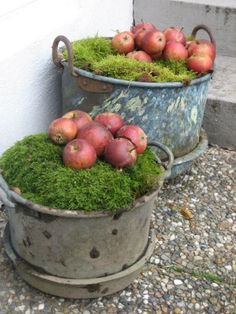 Dags att plocka undan utemöblerna Holidays And Events, Christmas Feeling, Winter Christmas, Apple Decorations, Christmas Garden Decorations, Autumn Inspiration, Christmas Inspiration, Garden Yard Ideas, Garden Tools