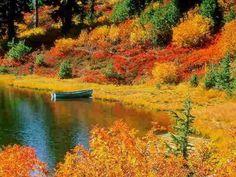 Fall photo by elleemae