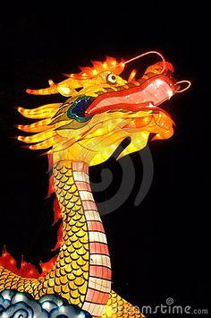 Chinese Dragon  by Petra Klaassen, via Dreamstime