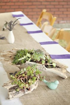 I'm doing this for my wedding 5/14/13 :) drift wood and succulents. My theme is earthy and artsy!