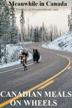 Tour de France has started! Meanwhile In Canada, Mountain Biking, Funny Pictures, Random Pictures, Funny Pics, Funny Memes, Wildlife, In This Moment, Canadian Humour