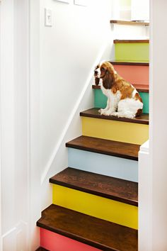 Gather sample pots in a variety of hues to give your staircase a rainbow makeover. #paintsamplecrafts #leftoverpaintideas #craftideas #diy #crafts #bhg Painted Staircases, Painted Stairs, Staircase Painting, Painted Tiles, Spiral Staircases, Vinyl Panels, Deco Originale, Stair Risers, Faux Painting
