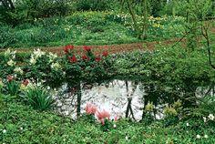 okrasná záhrada na kyslej pôde