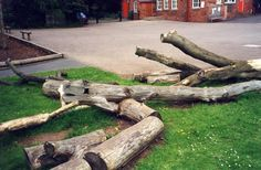 Oh what we wouldn't do for some lovely climbing logs.