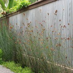Fences Design, Pictures, Remodel, Decor and Ideas