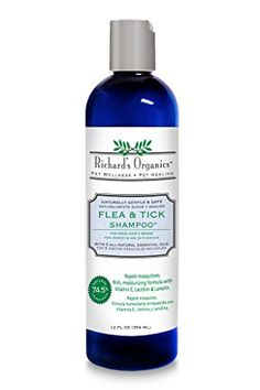 Dog Flea Control Shampoos - SynergyLabs Richards Organics Flea  Tick Shampoo 12 fl oz * To view further for this item, visit the image link. (This is an Amazon affiliate link)