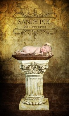Why, YES, your baby DOES deserve to be put on a pedestal for their first photos, tee hee! :) Newborn Photography Props Fur by BabyBirdz, $65.00