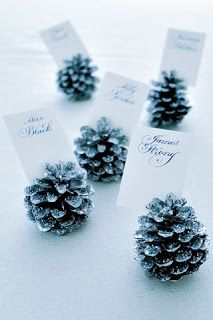 Pinecone place settings-Maddy these would be cute and inexpensive to do. Let me know if you are interested and I will pick up the pine cones in the back yard for them.