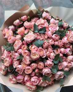 Photo how to earn online how to become a teacher online earn money online Beautiful Rose Flowers, My Flower, Fresh Flowers, Pink Flowers, Beautiful Flowers, Bloom Baby, Luxury Flowers, Flower Aesthetic, Arte Floral