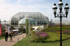 Phipps Conservatory-butterflies, flowers and Chihuly