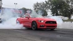 Melissa's Hellion Twin Turbo 2015 Mustang at the Track & Dyno