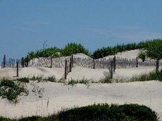 Dunes @ Pea Island...  Jul 2009  Outstanding in OBX!