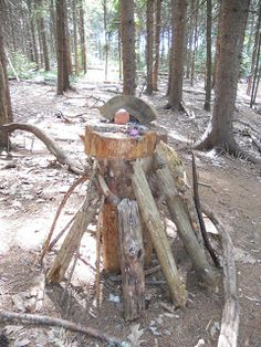 Day Trip Series: Fairy House Building - Falmouth, Maine