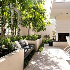 greenery on white with sun/shade.