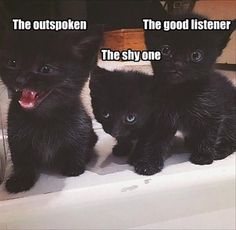 The Outspoken, The Shy One, The Good Listener